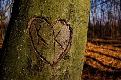 Sie sind verliebt? Stehen Sie zu Ihren Gefühlen!
