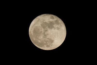 Der Mond ist der Trabant der Erde.