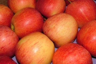 Fruchtzuckerintoleranz - so ernähren Sie sich gut.
