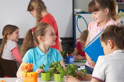 An Waldorfschulen wird praxisnaher Unterricht bevorzugt.