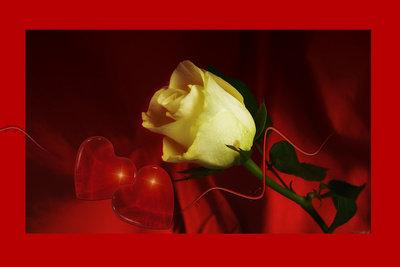 Leidenschaft und Liebe