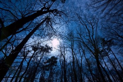 Nachtblindheit ist nicht ungefährlich!