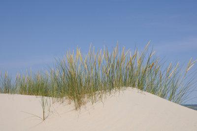 Baltrum ist eine Düneninsel.