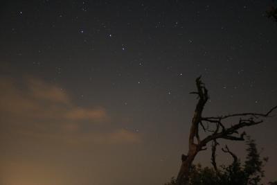 Der Polarstern gehört zum Sternbild des Kleinen Bären.