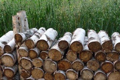 Manchmal raucht das Holz beim Verbrennen