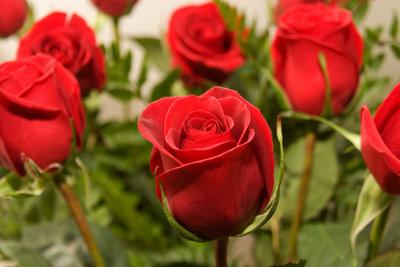 Ein bisschen Romantik am Valentinstag.