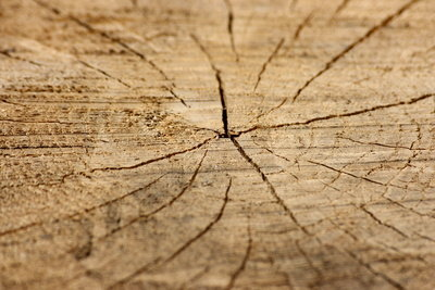 Holz kann man beizen.