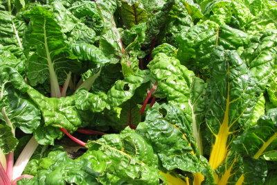 Grünes Blattgemüse enthält viele Aminosäuren.