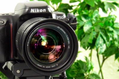 Tolle Bilder lassen sich nicht nur mit einer teuren Kamera schießen.