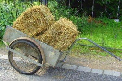 Der Fahrradanhänger - ein sehr billiges Transportmittel.