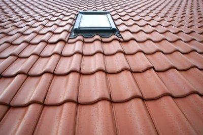 Für das Dachfenster einen Fliegenschutz finden