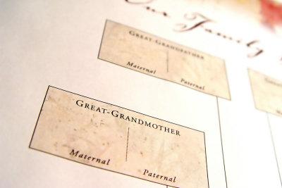 Mit der Erstellung Ihres Stammbaums erfahren Sie viel über Ihre Familiengeschichte.