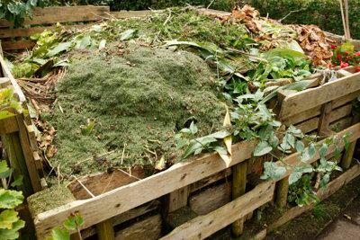 Kompostiertes Laub wird zu wertvoller Blumenerde.