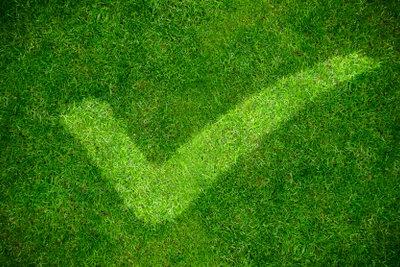 So grün kann eine Auffahrt sein.
