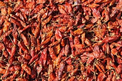 Cayennepfeffer liefert den Wirkstoff für Wärmepflaster.