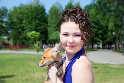 Der Fuchs ist ein Wildtier.