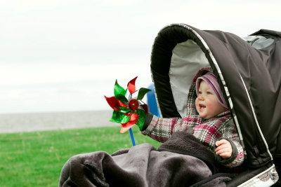 Mit Moskitonetz am Kinderwagen ist das Baby mückensicher.