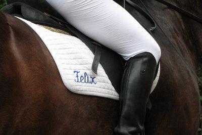 Reitstiefel gehören nach dem Gebrauch auf Stiefelspanner.