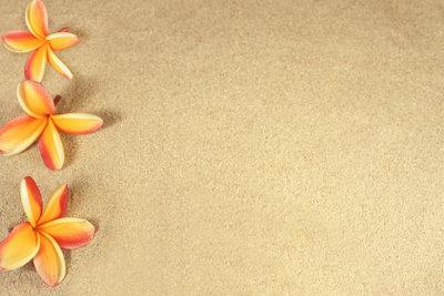 Blumen im Sand - eine wunderschöne Dekoration.