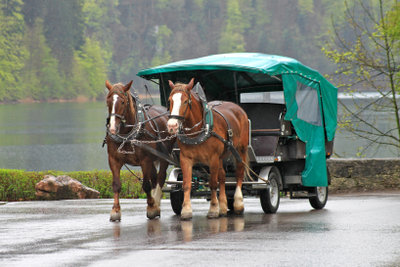 Planwagenfahrten gibt es seit Ende des 19. Jahrhunderts.