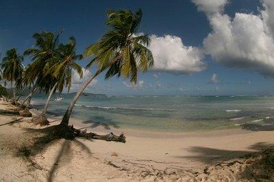 Risen 2 spielt in der Karibik.