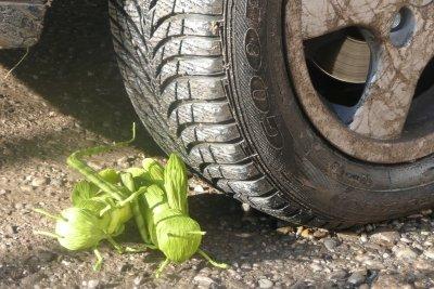 Ein optimaler Reifendruck ist sehr wichtig.