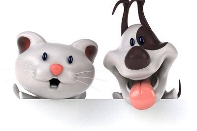 Hunde und Katzen sind beliebte Haustiere