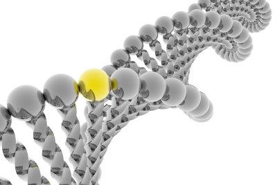 Was ist der Unterschied zwischen DNA und DNS?
