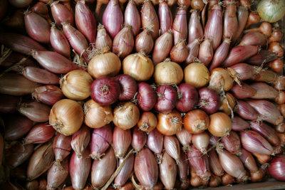 Zwiebeln enthalten ätherische Öle.
