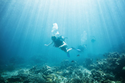 Auch auf dem Meeresboden befinden sich Becken.