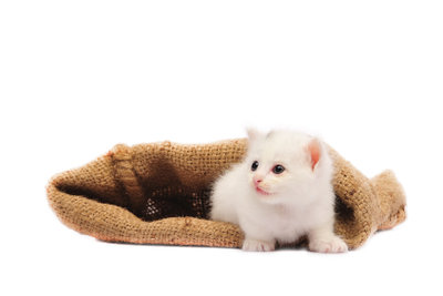 Hello Kitty selber basteln - Anleitung