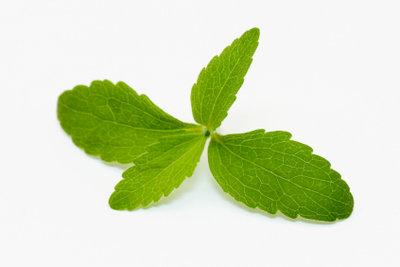 Stevia als natürlicher Süßstoff