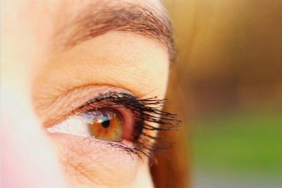 Augenbrauen wachsen nur langsam nach.