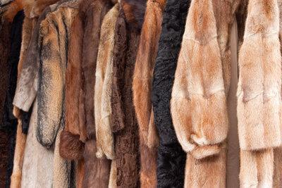 Wer einen Pelz verkaufen möchte, hat gute Chancen.