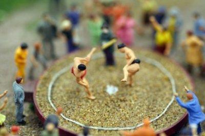 Mit dem Sumo-Kostüm können Sie gewichtig in den Ring treten.