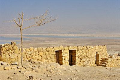 Salzbäder, z. B. im Toten Meer, können gegen Wasserwarzen helfen.