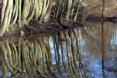 Optische Täuschung - Spiegelung im Wasser