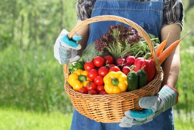 Frisches Gemüse ist typisch für die Landfrauen-Küche.