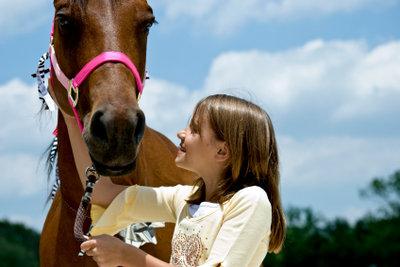 Viele kleine Mädchen lieben Pferde.