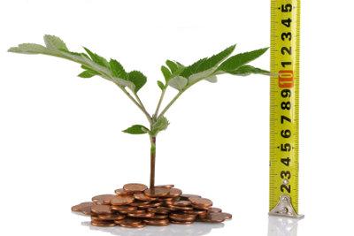 Die Buchführung gibt genaue Auskunft über die Wirtschaftlichkeit.