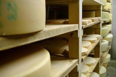 Bei jeder Käseherstellung fällt Molke an.
