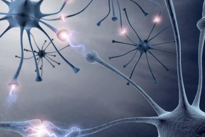 Noradrenalin ist auch ein wichtiger Neurotransmitter im Gehirn.
