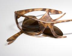 Apollo Brillenversicherung Und Die Bedingungen Wissenswertes
