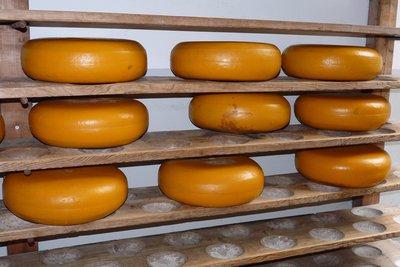 In Käse ist viel Casein enthalten.