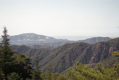 Bei ausreichend Regen ergrünen zyprische Landschaften im Januar.