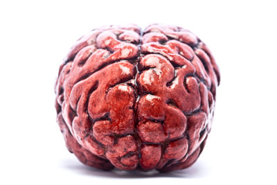 Neuropsychologie Studium