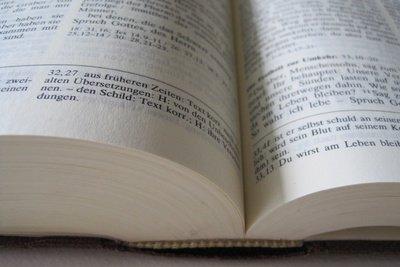 Literatur richtig angeben