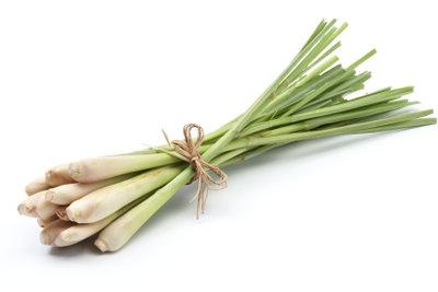Zitronengras verbreitet asiatisches Aroma.