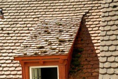 Nicht jedes Dach ist modern.