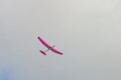 Modellflugzeug - nicht jeder Flieger ist für Anfänger geeignet